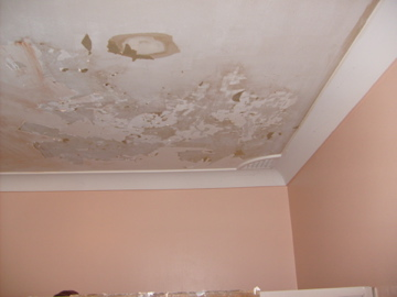 Bathroom Ceiling The Crazy Engineer - How to fix bathroom ceiling